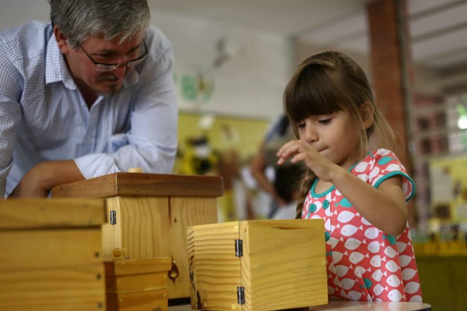 Criança observa pequena colmeia de abelhas