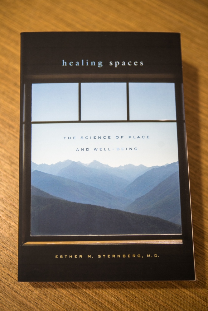 capa do livro Healing Spaces