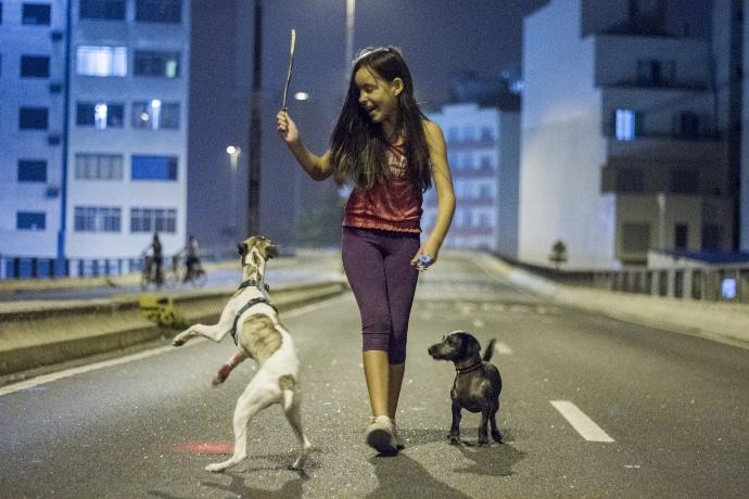 Criança brincando com cães no Minhocão