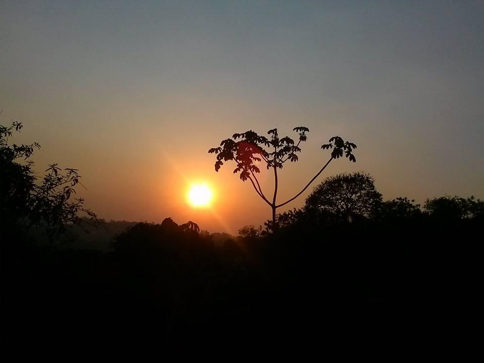 Por-do-sol no Parque dos Búfalos