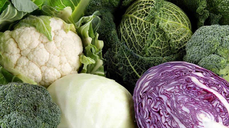 alimentos que causam o mau cheiro