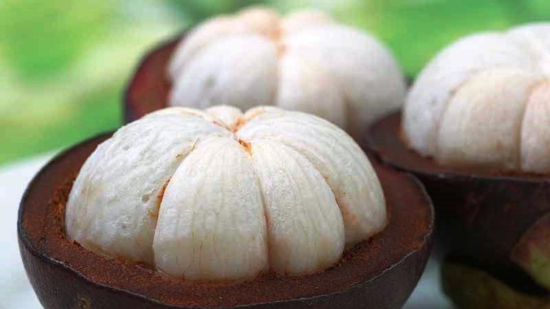 benefícios do mangostin